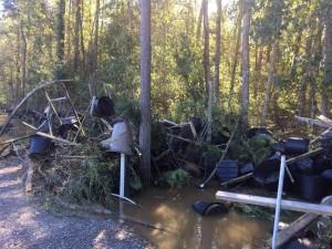 2016 Hurricane Matthew Nursery Damage